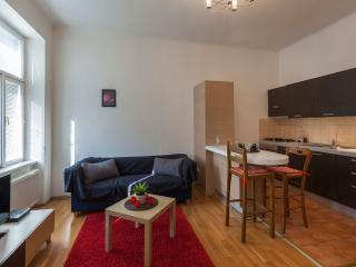 Superior Two Bedroom Apartment - Prague vacation rentals