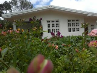 Bright 5 bedroom Guest house in Nuwara Eliya with Internet Access - Nuwara Eliya vacation rentals