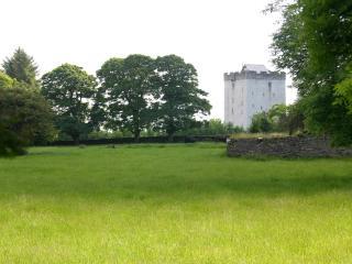 Turin Castle Kilmaine County Mayo Ireland - Kilmaine vacation rentals