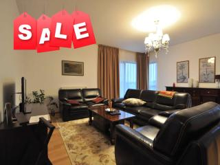 Fresh, Friendly & Central  3 rooms apartment // - Bucharest vacation rentals