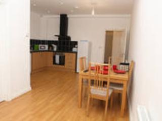 Spacious 1st floor 1 bedroom apartment - London vacation rentals