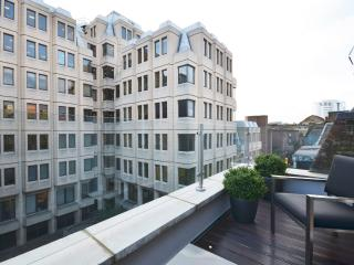 Superb 2 bed penthouse with a spectacular terrace - London vacation rentals