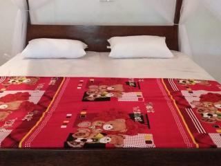 Nice 3 bedroom Matara Villa with Internet Access - Matara vacation rentals
