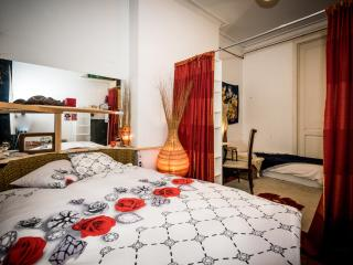 Beautiful Room in the Heart of Ixelles - Ixelles vacation rentals