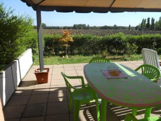 """Gallo"" Appartamento con Matrimoniale - Castel San Pietro Terme vacation rentals"