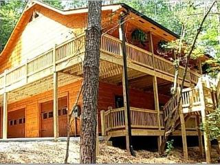 Luxury cabin, secluded, just minutes from town! - Ellijay vacation rentals