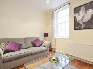 A spacious 2 bedroom apartment by Embankment Pier - London vacation rentals