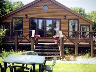 Pinnock Lodge / Gallops View - Winchcombe vacation rentals