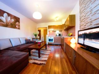 Nice 1 bedroom Tatranska Strba Apartment with Housekeeping Included - Tatranska Strba vacation rentals
