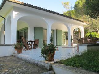 STUNNING VILLA ON ELBA ISLAND :-) - Procchio vacation rentals