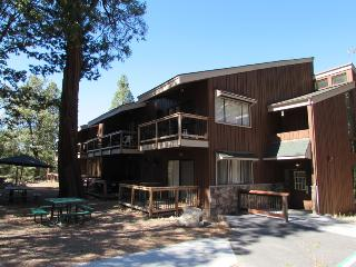 Nice Yosemite National Park Studio rental with Short Breaks Allowed - Yosemite National Park vacation rentals