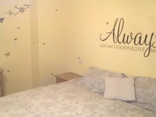 Awel Aur near New Quay and Aberaeron - Aberaeron vacation rentals