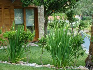 "Gerês Olival ""Barcelos"" | Turismo Espaço Rural - Geres vacation rentals"