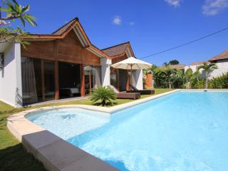 Sumptuous Villa 800 m from Beach - Seminyak vacation rentals