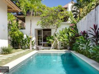 Beautiful Villa with Internet Access and Shared Outdoor Pool - Seminyak vacation rentals