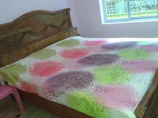 Bodhgaya House - Bodh Gaya vacation rentals