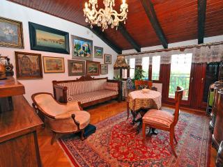Antique apartment - Split vacation rentals