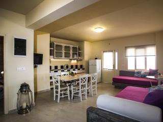 F Anastasis Apt Exo Gialos Beach - Exo Gialos vacation rentals