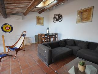 Furnished apartment with terrace Aix City Center - Aix-en-Provence vacation rentals