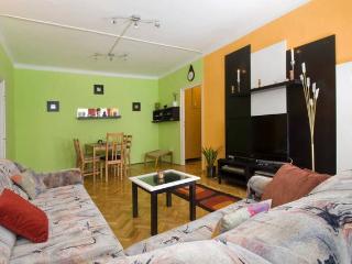 CityCenter Modern Apartment Budapest - Budapest vacation rentals