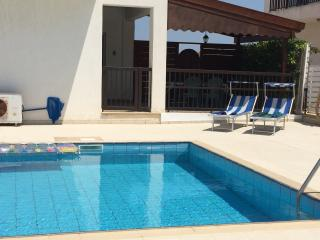 Family-friendly 4 bed villa with pool and wifi - Paralimni vacation rentals
