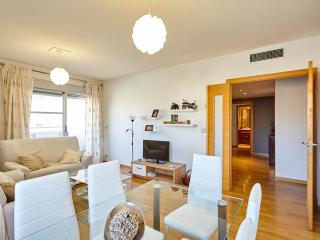 Cozy 3 bedroom Apartment in Alicante - Alicante vacation rentals