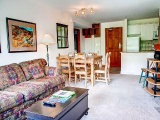 Aspens #358, 2 Bdrm, Ski in Ski out, Bright Pool View, Free Wifi & BBQ - Whistler vacation rentals