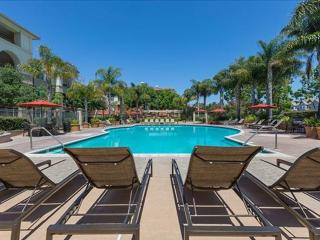 GORGEOUS 1 BEDROOM APARTMENT IN SAN MATEO - 2 - Belmont vacation rentals