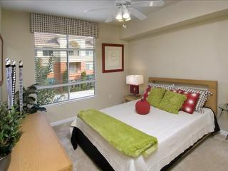 GORGEOUS 1 BEDROOM APARTMENT IN SAN MATEO - 3 - Belmont vacation rentals