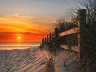 "Pet Friendly Beach Villa ""The Redington"" - Redington Shores vacation rentals"