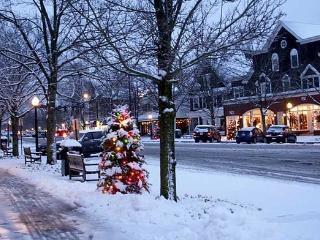 Magical Southampton Christmas or New Year's - Southampton vacation rentals