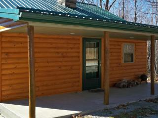 Rustic Cabin - Winter Vacation Wonderland - Mill Run vacation rentals