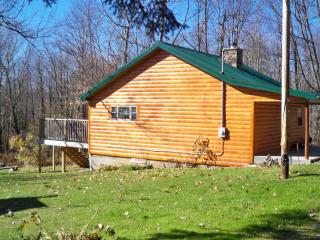 Cozy 2 bedroom Cottage in Mill Run with Deck - Mill Run vacation rentals