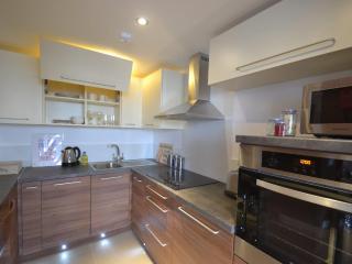 Modern 1 and 2 beds Watford Apartments - Watford vacation rentals
