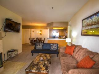 Luxury large condo 2 Bedroom /2 Bathroom - La Jolla vacation rentals