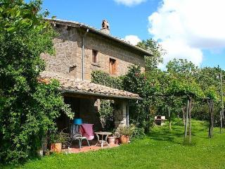 Nice 2 bedroom House in Montefiascone - Montefiascone vacation rentals