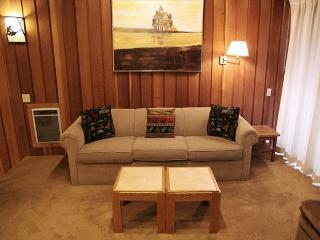 Cute woodsy 2 bedroom 2 bath condo walking distance to Canyon Lodge. - Mammoth Lakes vacation rentals