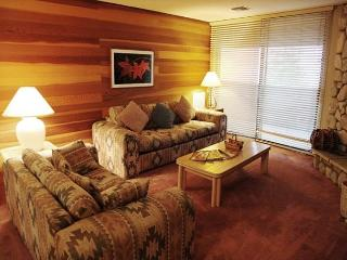2 Bed/2 Bath Ski-in, Ski-out Luxury at Eagle Lodge - Mammoth Lakes vacation rentals