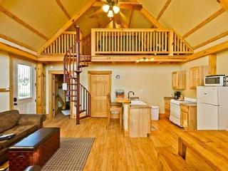 #3 Mourning Dove Haus - River Road Treehouses - New Braunfels vacation rentals