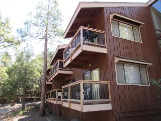 Cozy Apartment with Deck and Internet Access - Yosemite National Park vacation rentals