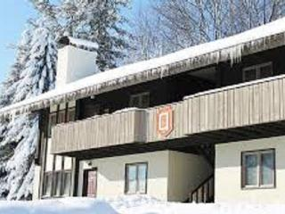 Boyne Mountain, Walk To The Chair Lifts - Boyne Falls vacation rentals