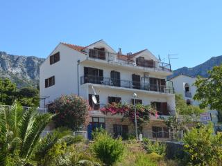 Charming Apartment with Television and Satellite Or Cable TV in Gradac - Gradac vacation rentals