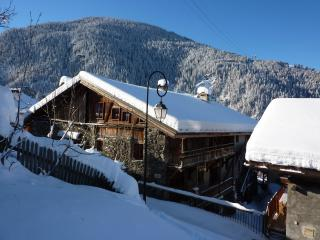 6 bedroom House with Internet Access in Peisey - Peisey vacation rentals