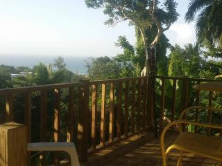 Nice Condo with Balcony and DVD Player - Rincon vacation rentals