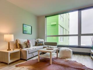 Dog-friendly condo near the waterfront with a shared roof deck, BBQ area & gym! - Seattle vacation rentals
