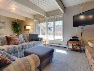 Walk to slopes from this comfy family-friendly condo w/shared hot tub! - Aspen vacation rentals