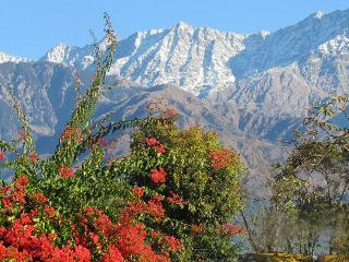 Nice 25 bedroom Dharamsala Guest house with Internet Access - Dharamsala vacation rentals