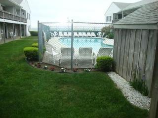 Ocean View Condo, Across from Beach! - Dennis Port vacation rentals