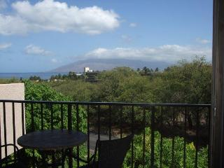 Cozy 2 bedroom House in Wailea-Makena - Wailea-Makena vacation rentals