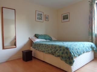 Modern, spacious flat with garden - Bristol vacation rentals